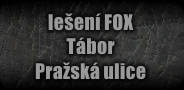 fox_taborp_off.png, 24kB